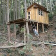1棟目のツリーハウス